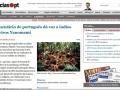 FilhosDaLua_DiarioDeNoticias